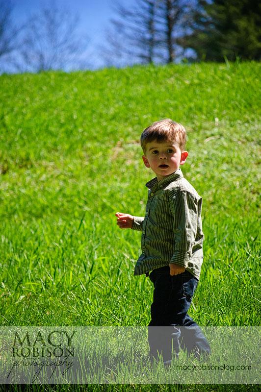 Climbing the grass