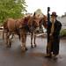 Mule Skinner Bob, Brownsville Oregon