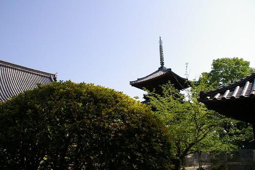 本蓮寺 #1
