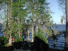 lake story 012 (shankargallery) Tags: landscapes nikon piers northcarolina lakeside spanishmoss lakescapes lakewaccamaw shankargallery richardlazzara clustershotcom