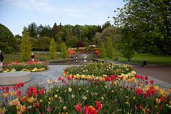 Botaniska.. (Pauline Andersson) Tags: göteborg sweden location sverige botaniskaträdgården område gteborg omrde botaniskatrdgrden