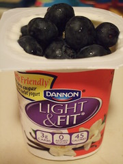 Dannon Light & Fit Diabetic Friendly Yogurt (with some fresh blueberries thrown in)