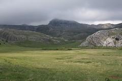 Masna bara (Gornja Bara, Republika Srpska, Bosnia and Herzegovina) Photo