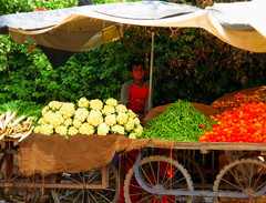 Vegetables for sale... (Manreet.D) Tags: poverty boy people india money beautiful vegetables stand amazing child sad market poor labour punjab selling aasia earthasia unseenindia