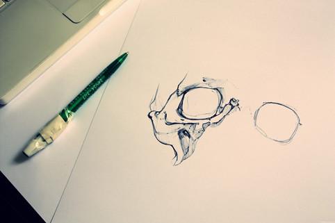 Crâne © Emilie Vasset