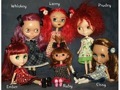 My dolly family as of January 2009