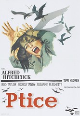 The Birds (1963) Yugoslavian Poster (Moviefan1014) Tags: birds taylor rod alfred hitchcock tippi hedren