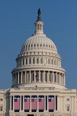 Obama-2343 (timfernando) Tags: usa washingtondc washington unitedstates senator president patriotism obama inauguration 44th barack obamania