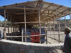 0695G Etiopia - Axum (massiminogf) Tags: obelisco axum etiopa