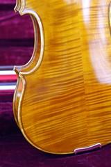 violin-back