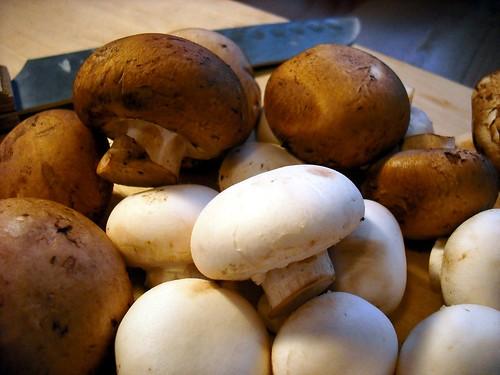 Double Mushroom Soup | A Dash of Sass