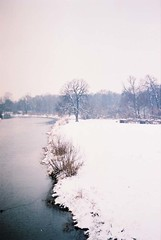 (MilkyAir) Tags: winter snow cold tree film analog river iso200 poland polska praktica nysa mtl3 milkyair