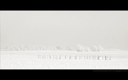 despre alb ca zapada (V)