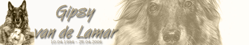 .jpg 08.03.09 Banner Gipsy sepia