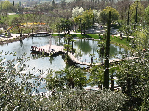 Der Teich mit seinen Fischen und den Palmengärten