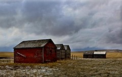 Old Granaries (Ken Yuel Photography) Tags: grasslands granaries grainstorage snowinapril drumhellerbadlands digitalagent canon5dmkii kenyuel oldwoodengranaries ontheprairies