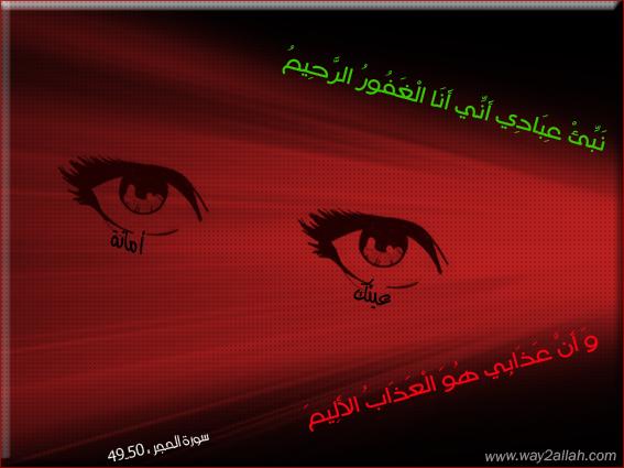 ���� ����� ���� ������ ���� 3489716372_3e6b2eda7e_o.jpg