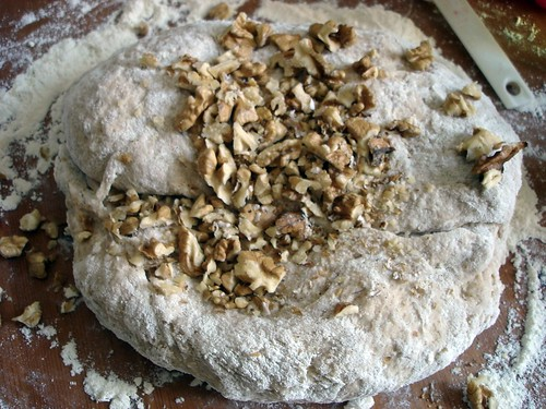 About to knead in the walnuts...
