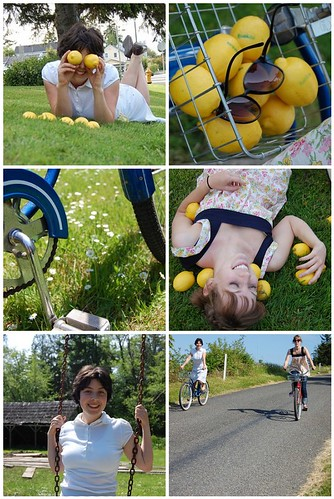 Making Lemonade Weekend Mosaic
