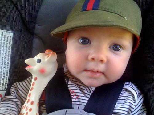 Luc plus Giraffe