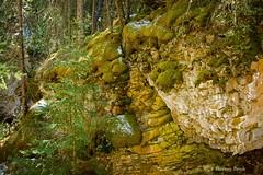 Johnston Canyon 22    9156 (Harvey Brink - Canadian Visuals) Tags: canada alberta banffnationalpark johnstoncanyon