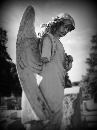 Cemetary Angel 4