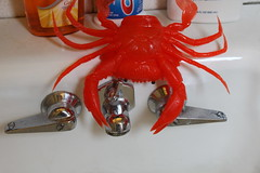 IMG_0424 (ShellyS) Tags: sinks rubbercrabs