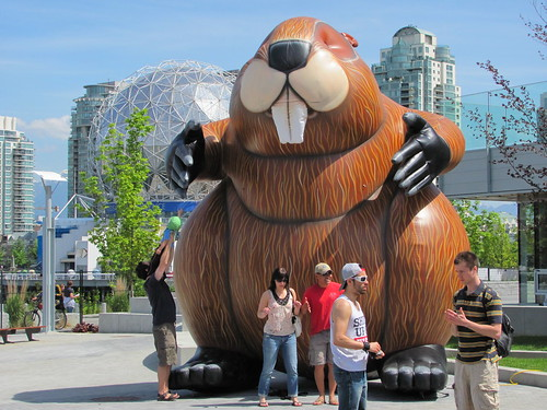 Giant Inflatable Beaver from Vancouver 2010 Olympics Closing Ceremony on Display  at Olympic Village Open House