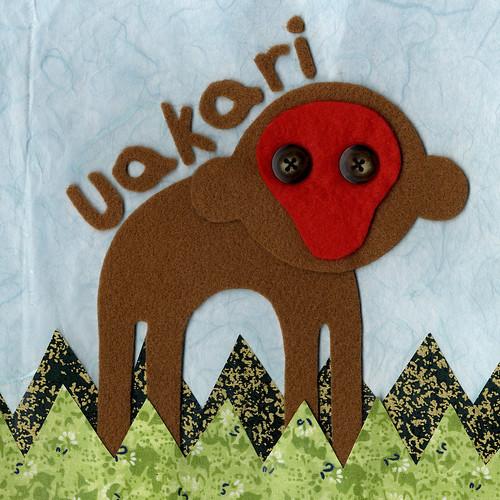 Uakari #3