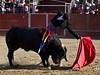 Adolfo Ramos (FJimenez92) Tags: festival toros bullfight elescorial pablolechuga ivanvicente sergioaguilar adolforamos victorpuerto