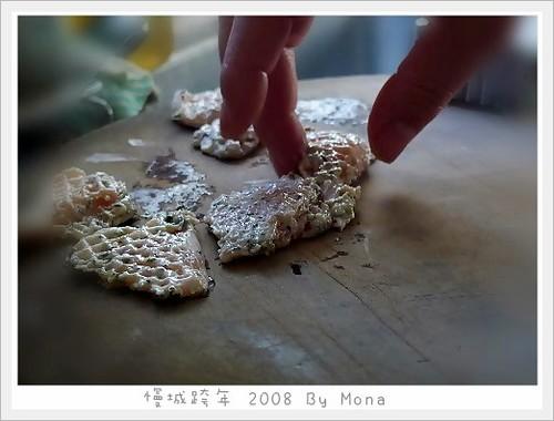 monacat1 拍攝的 009-20090108。