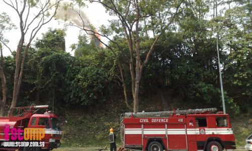 Fire so large that SCDF firemen take turns having dinner on-site