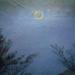 Friedrich Moon