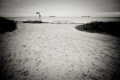 Walking to the beach (Hkan Dahlstrm) Tags: sea bw beach strand sand sweden schweden playa sverige plage spiaggia helsingborg resund sude svezia r skanelan powmerantusenord
