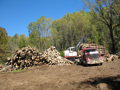 Middle River Tract Logging