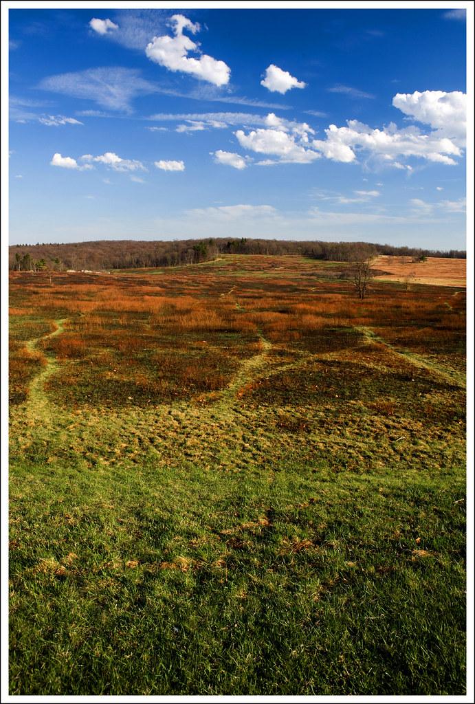 Big Meadows Burn - Shenandoah National Park