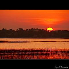 South Carolina (pearson_251) Tags: sunset orange water yellow island fantastic colorful shot southcarolina marsh spartina hiltonheadisland beaufortcounty pinckneyisland mckaycreek