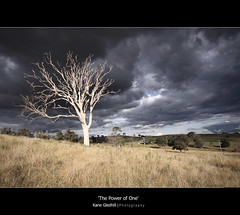 The Power of One ([ Kane ]) Tags: road light storm black tree grass rain clouds contrast rural fence landscape shine farm australia hills explore nsw qld queensland kane stark gledhill padock thepowerofone fbdg kanegledhill vosplusbellesphotos gmofreeagriculture kanegledhillphotography