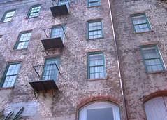 Savannah spring 09 061