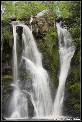 Posforth Gill, Valley of Desolation. (Nick Atkin) Tags: trees nature water abbey waterfall rocks yorkshire valley bolton flowing gill dales desolation yorkshiredales boltonabbey valleyofdesolation posforth