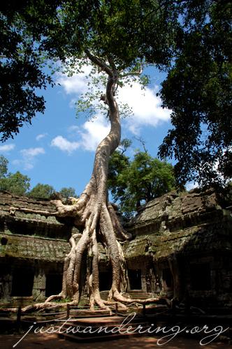 Angkor Wat, Cambodia 47