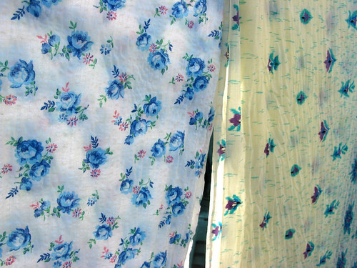 blue_flowers_border_print