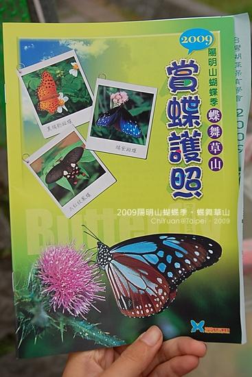 2009陽明山蝴蝶季02.JPG