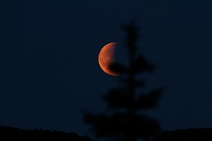Mneformrkelse (Kjell-Arne) Tags: moon norway stord mooneclipse fitjar dafjorden