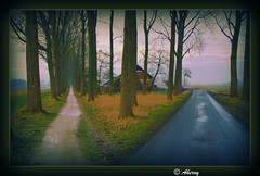 These Dark days,Which  Way to follow ?,Groningen,the Netherlands,Europe. (Aheroy(2Busy)) Tags: city holland art netherlands dutch photomanipulation dark fun europe colours different arts nederland surreal hallucination groningen beautifull aheroy aheroyal