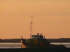 ELISE (Herman Verheij) Tags: lelystad ijsselmeer ijs ijsbreken