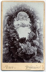 Sleeping (josefnovak33) Tags: old sleeping vintage de photograph cdv visite carte