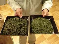 DSC04514 (Matcha Source) Tags: greentea teafactory teafields japanesetea greenteapowder matchatea matchafactory