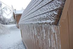 Icicles (laurienrick) Tags: ice nature icestorm damage arkansas naturaldisaster springdale january2009 icestorm2009