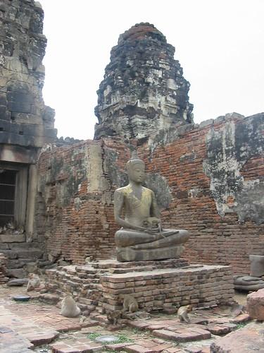 buddha met aapje op schoot